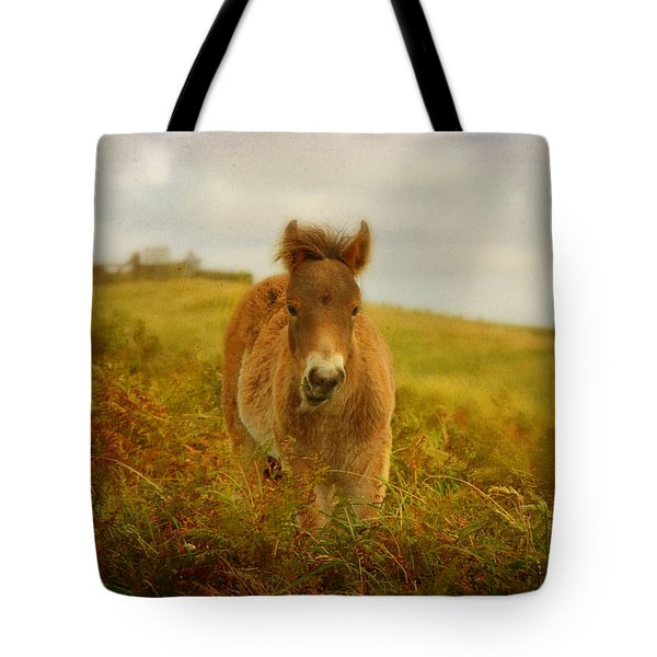 Exmoor Wild Pony Tote Bag by Carla Parris