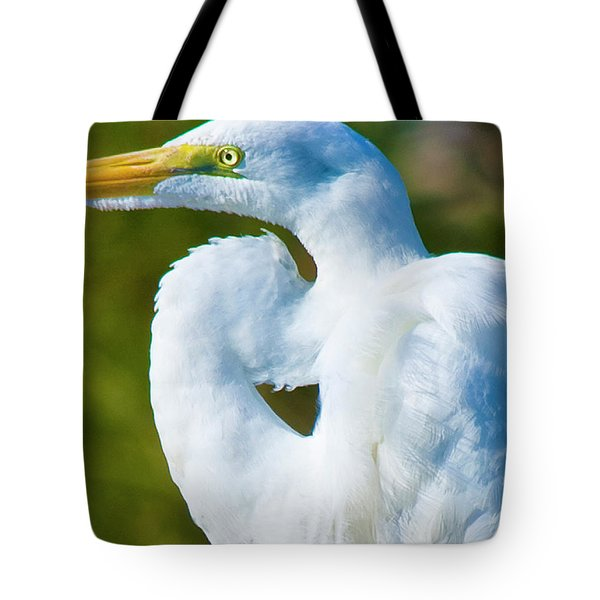Eye-catching Tote Bag by Betsy Knapp