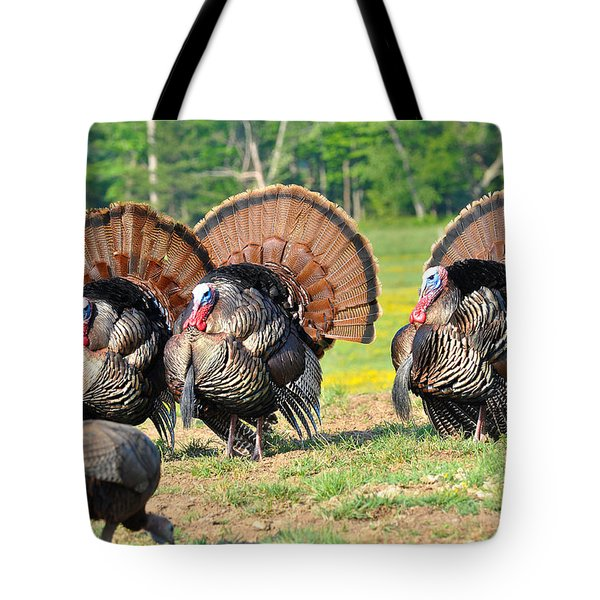 Eyes On The Prize Tote Bag by Todd Hostetter