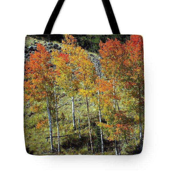 Fall In Colorado Tote Bag by Marty Koch