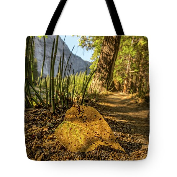 Fall In Leaf Tote Bag by Peter Tellone