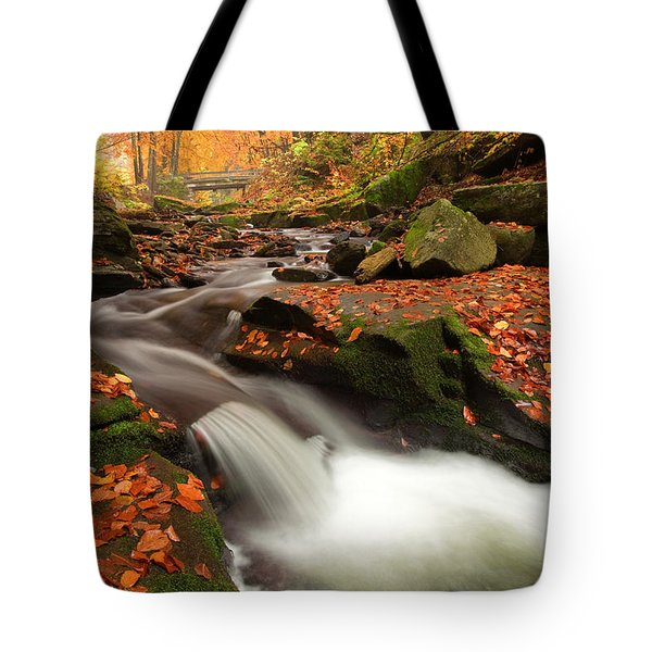 Fall Power Tote Bag by Evgeni Dinev