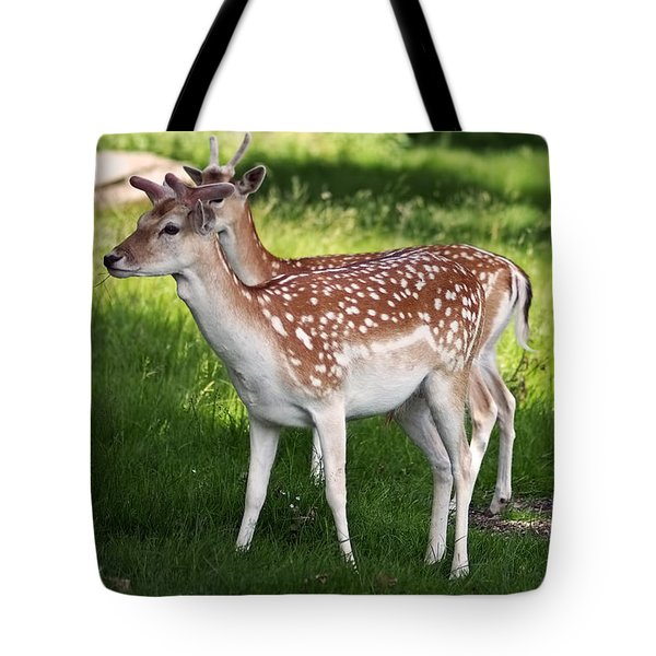 Fallow Deer In Richmond Park Tote Bag by Rona Black
