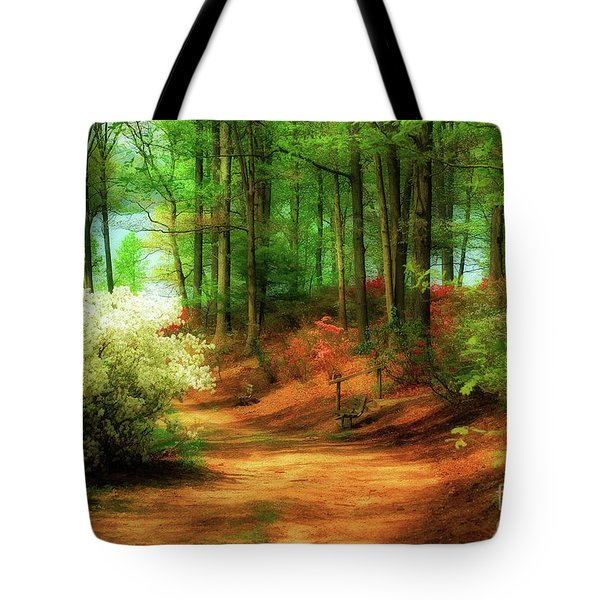 Favorite Path Tote Bag by Lois Bryan