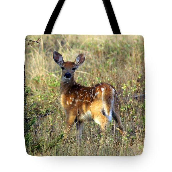 Fawn Tote Bag by Marty Koch