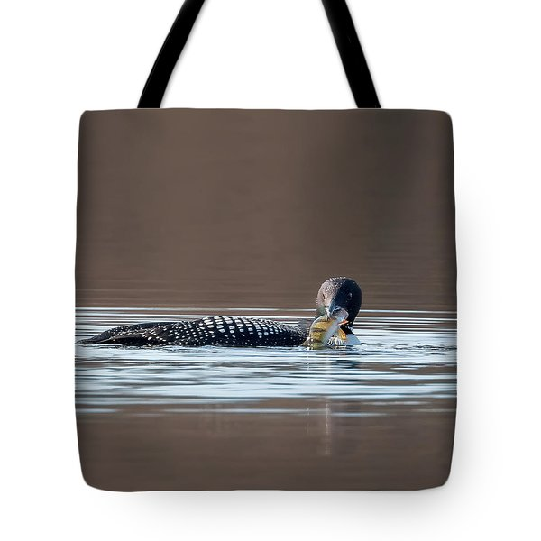 Feeding Common Loon Square Tote Bag by Bill Wakeley