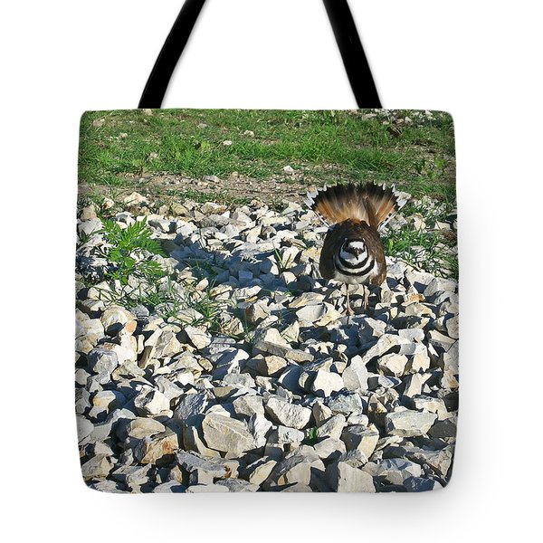 Female Killdeer Protecting Nest Tote Bag by Douglas Barnett