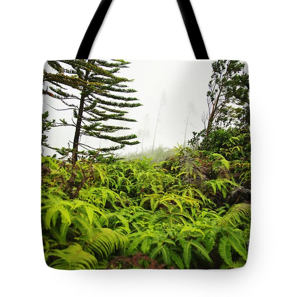 Fern and Norfolk II Tote Bag by Ron Dahlquist - Printscapes