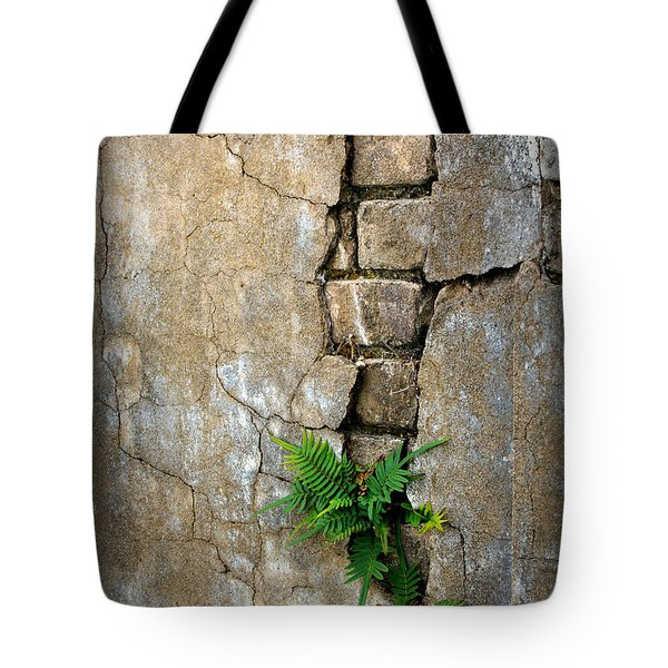 Fern Life Tote Bag by Perry Webster