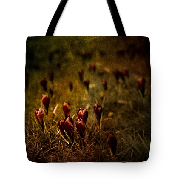 Fields Of Elegance Tote Bag by Loriental Photography