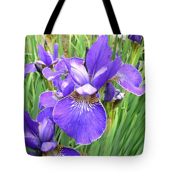 Fields Of Purple Japanese Irises Tote Bag by Jennie Marie Schell