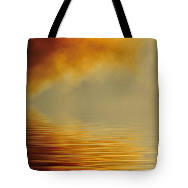 Filtered Sun Tote Bag by Jerry McElroy