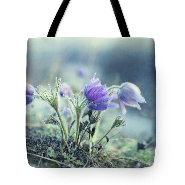 finally spring Tote Bag by Priska Wettstein
