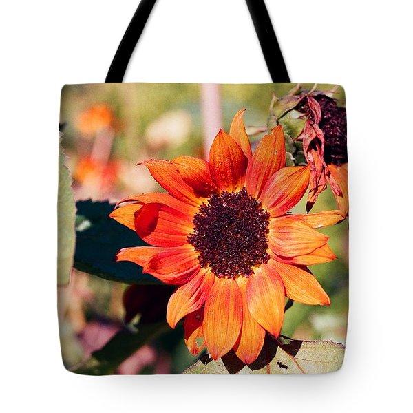Fire Flower Tote Bag by Jonathan Michael Bowman