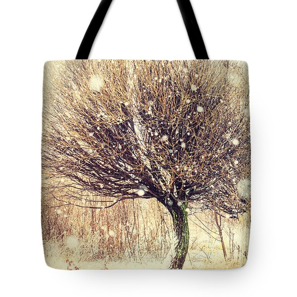 First Snow. Snow Flakes Tote Bag by Jenny Rainbow