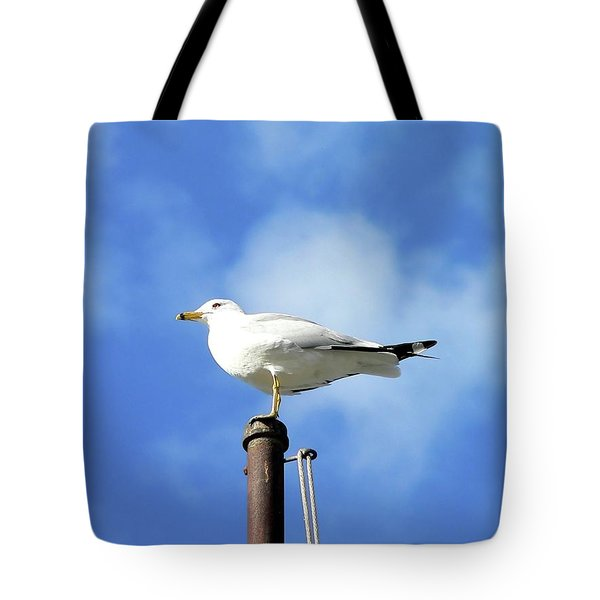 Flagpole Gull Tote Bag by Al Powell Photography USA