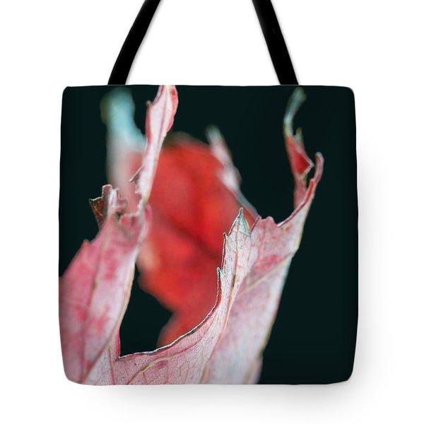 Flame Tote Bag by Lauren Radke