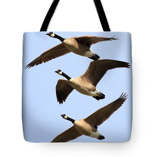 Flight of Three Geese Tote Bag by Wingsdomain Art and Photography