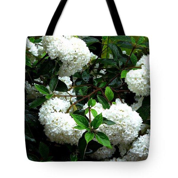 Flower Snow Balls Tote Bag by Valerie Ornstein