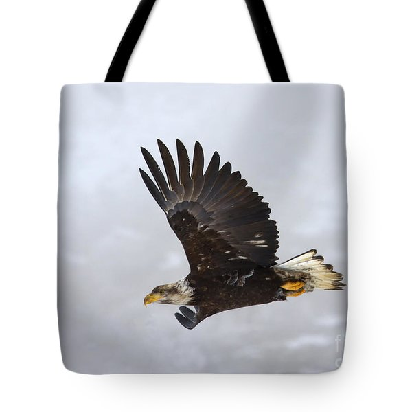 Foggy Flight Tote Bag by Mike  Dawson