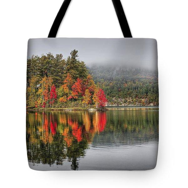 Foggy Morning Tote Bag by Evelina Kremsdorf
