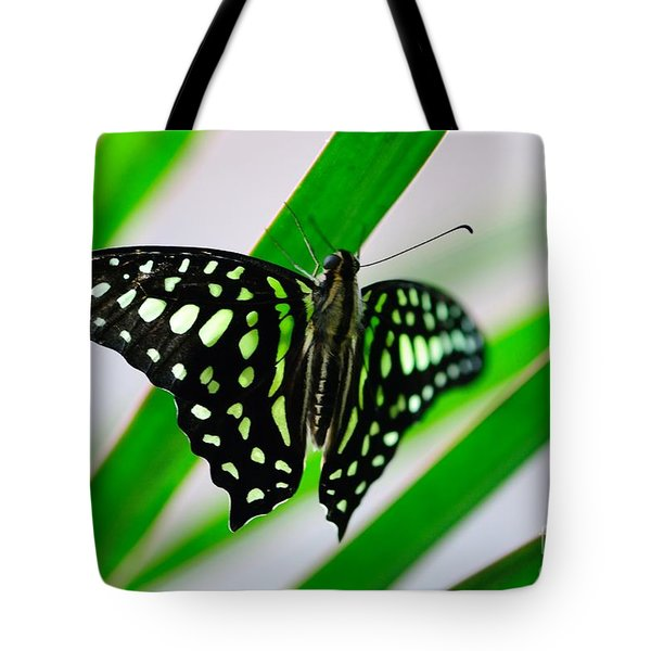 Forest Queen Tote Bag by Charles Dobbs