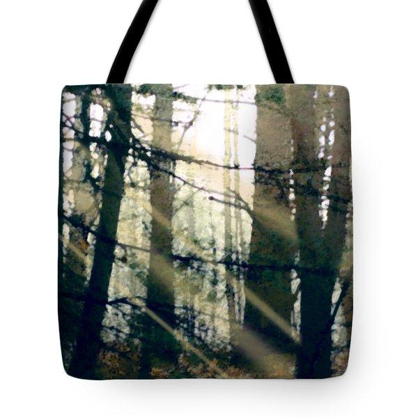 Forest Sunrise Tote Bag by Paul Sachtleben