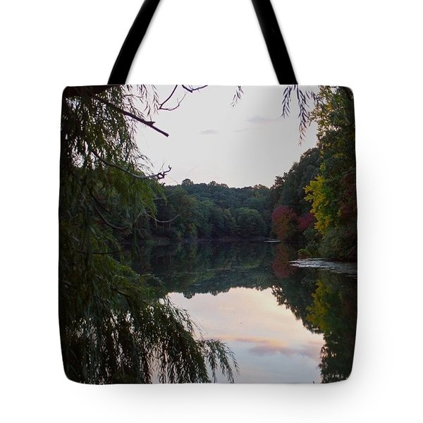 Framed Lake Reflection  Tote Bag by Justin Connor