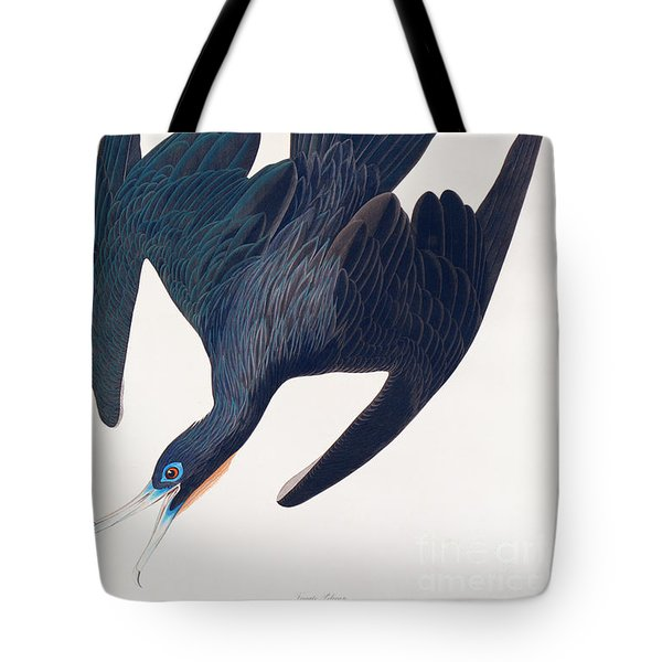 Frigate Penguin Tote Bag by John James Audubon