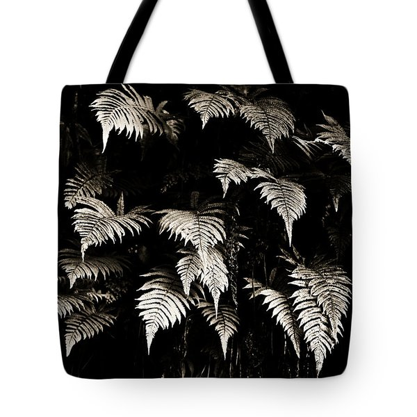 Fronds Tote Bag by Marilyn Hunt