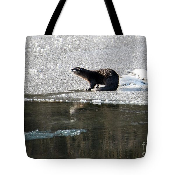 Frosty River Otter  Tote Bag by Mike Dawson