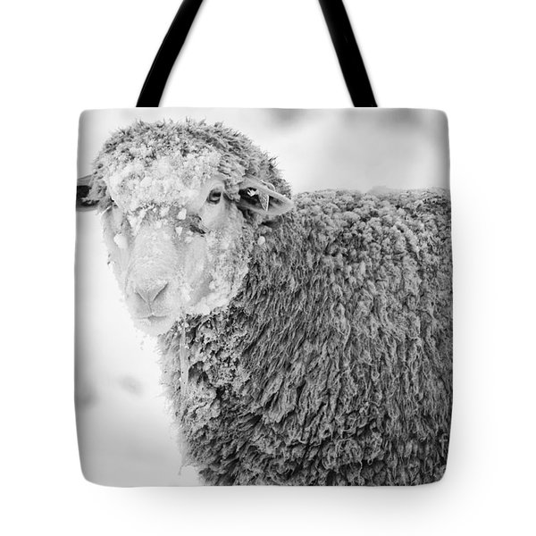 Frozen Dinner Tote Bag by Mike  Dawson