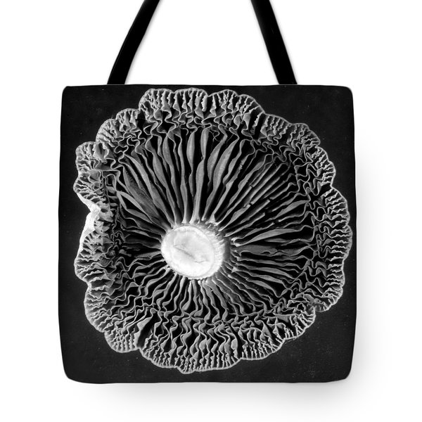 Fungi Two Tote Bag by Jim Occi