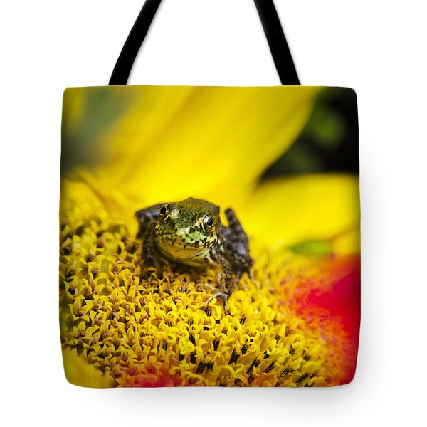 Funny Frog On A Sunflower Tote Bag by Christina Rollo
