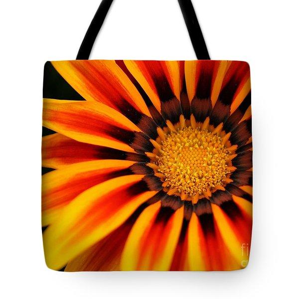 Gazania R Tote Bag by Sabrina L Ryan
