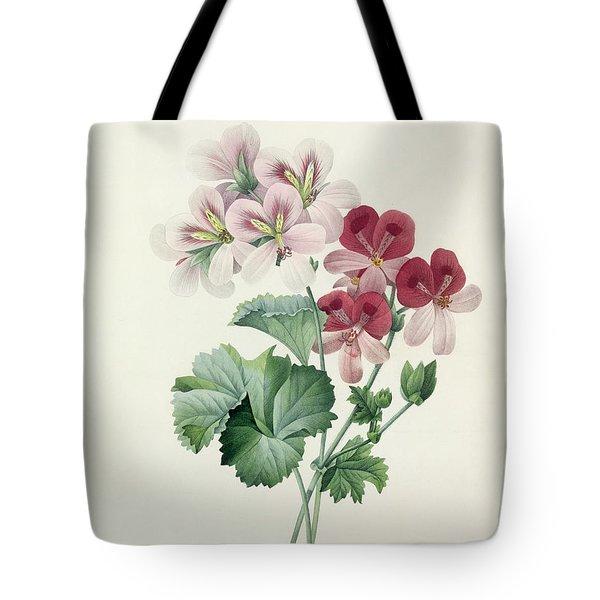 Geranium Variety Tote Bag by Pierre Joseph Redoute