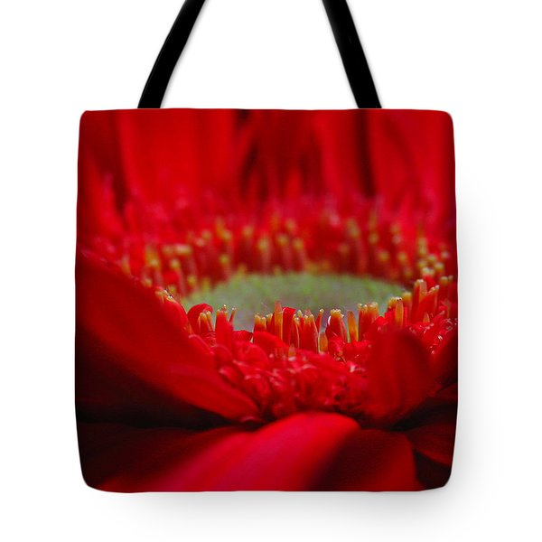 Gerber Daisy Tote Bag by Juergen Roth