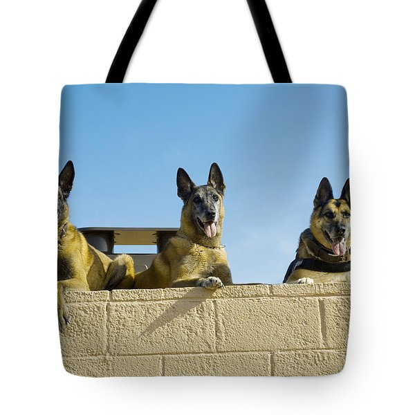 German Shephard Military Working Dogs Tote Bag by Stocktrek Images