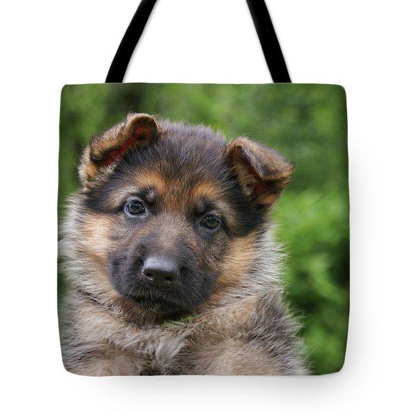 German Shepherd Puppy IIi Tote Bag by Sandy Keeton