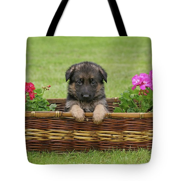 German Shepherd Puppy In Basket Tote Bag by Sandy Keeton