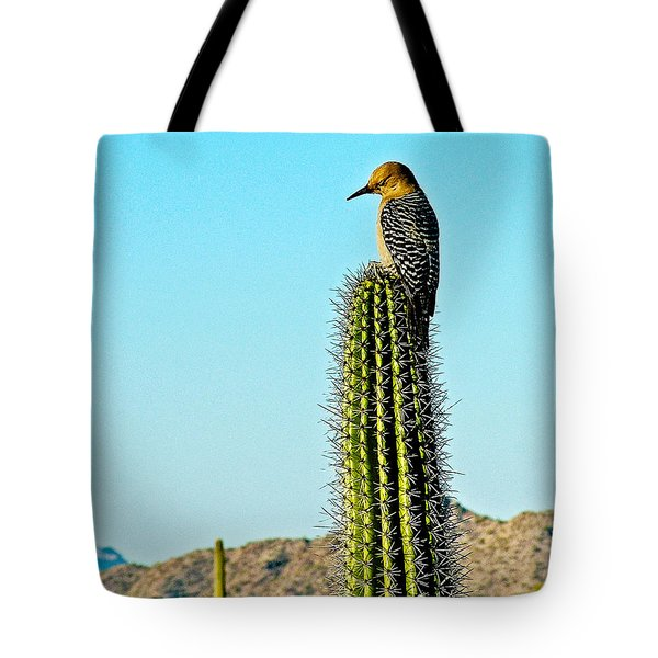 Gila Woodpecker On Saguaro In Organ Pipe Cactus National Monument-arizona Tote Bag by Ruth Hager