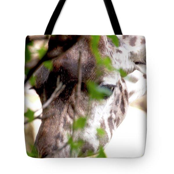 Giraffe Tote Bag by Steven Natanson