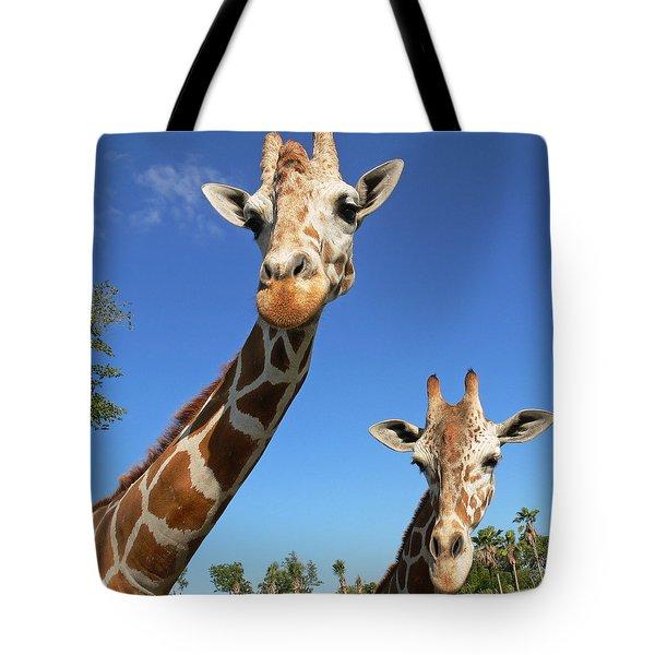 Giraffes Tote Bag by Steven Sparks