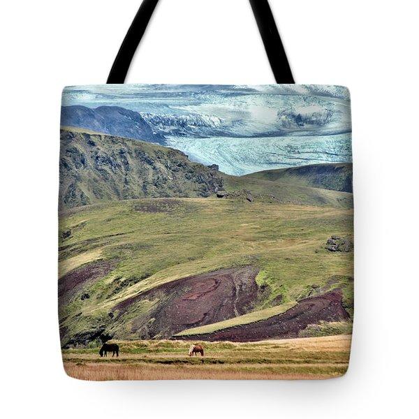 Glacier Mountains Meadows Horses Tote Bag by David Halperin