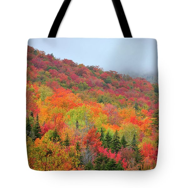 Glorious Tote Bag by Betty LaRue