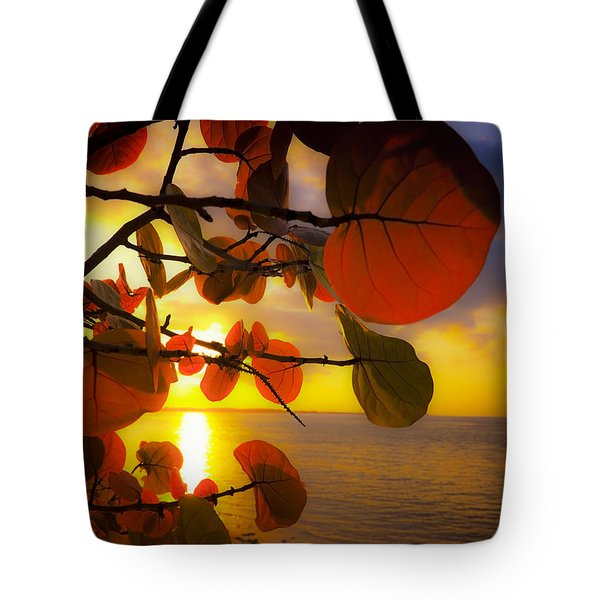 Glowing Red II Tote Bag by Stephen Anderson