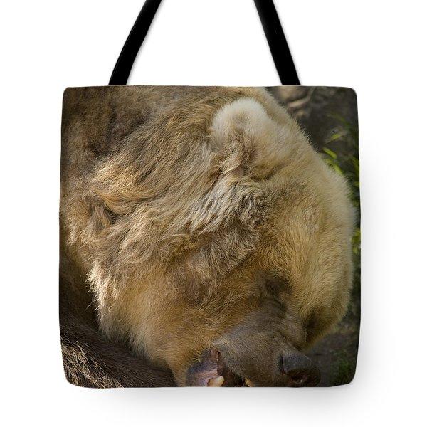 Gnaw Tote Bag by Mike  Dawson