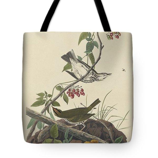 Golden-crowned Thrush Tote Bag by John James Audubon