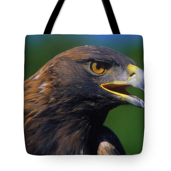 Golden Eagle Tote Bag by Tony Beck