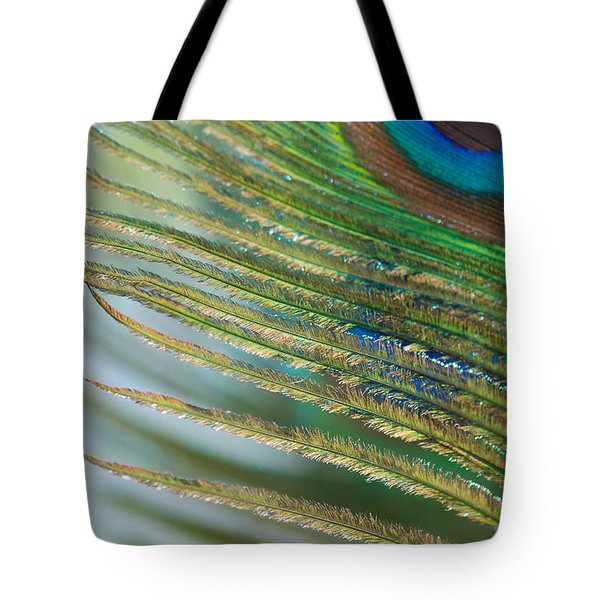 Golden Feather Tote Bag by Lisa Knechtel